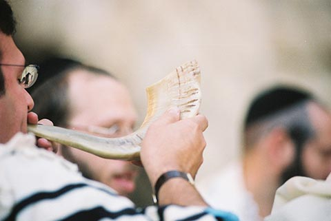 Elul, the shofar of compassion.  Froom the Kabbalah of Rabbi Ashlag